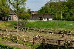 Freilichtmuseum-Mofssee-24