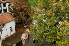 Besuch-auf-Schloss-Nidda-11