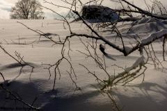 Winterberg Januar 2019  - -8