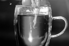 Nixe-im-Teeglas-black-and-white